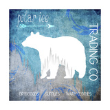 Polar Ice Giclee Print by  LightBoxJournal