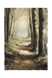 Forest Path Oil Giclee Print by Steve Henderson