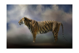 Waiting in the Light Giclee Print by Jai Johnson