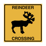 Reindeer Crossing Giclee Print by Tina Lavoie