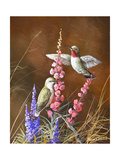 Spring Visitors Giclee Print by Trevor V. Swanson