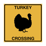 Turkey Crossing Giclee Print by Tina Lavoie
