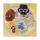 Pansies Giclee Print by Judy Mastrangelo