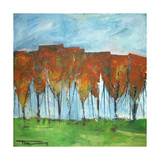 Autumn Patchwork Giclee Print by Tim Nyberg