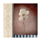 Magnolia Diamond 1 Giclee Print by  LightBoxJournal