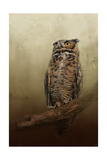 Great Horned Owl at Shiloh Giclee Print by Jai Johnson