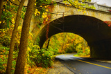 Tunnel of Fall Photographic Print by  Eye Of The Mind Photography