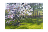 Magnolia Giclee Print by Rusty Frentner