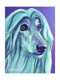 Afghan Hound - Aqua Giclee Print by  Dawgart