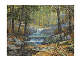 Glen Creek Waterfalls Giclee Print by Peter Snyder