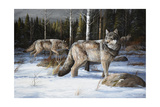 Pack Leaders Giclee Print by Trevor V. Swanson