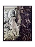 DaVinci Cornice 2 Giclee Print by Vintage Lavoie