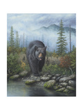 Smoky Mountain Black Bear Giclee Print by Robert Wavra