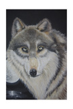 Moonlight Wolf Giclee Print by Sue Clyne