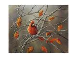 Fall Cardinal Giclee Print by Sarah Davis