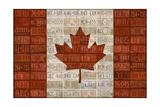 Canada License Plate Flag Reproduction procédé giclée par  Design Turnpike