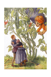 CA Fairy 52 Giclee Print by  Vintage Apple Collection