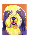 Bearded Collie - Banana Reproduction procédé giclée par  Dawgart