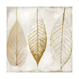 Fallen Gold II Giclee Print by  Color Bakery