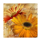 Golden Gerbera II Giclee Print by  Art Licensing Studio