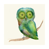 Green Owl Giclee Print by  Wyanne