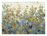 Anew II Premium Giclee Print by Tim OToole