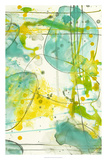 Splish Splash II Premium Giclee Print by Jennifer Goldberger