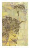 Dandelion Dance II Premium Giclee Print by Jennifer Goldberger