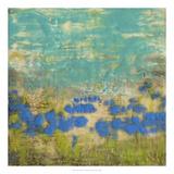 Cornflower Poppies I Premium Giclee Print by Jennifer Goldberger
