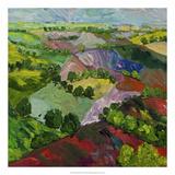 Deep Ridge Red Hill Premium Giclee Print by Allan Friedlander