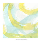 Luminosity III Premium Giclee Print by J. Holland