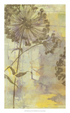 Dandelion Dance I Premium Giclee Print by Jennifer Goldberger