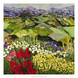 High Mountain Patch Premium Giclee Print by Allan Friedlander