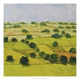 Dusty Meadows Premium Giclee Print by Allan Friedlander