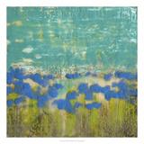 Cornflower Poppies II Premium Giclee Print by Jennifer Goldberger