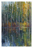 Pine Reflection II Premium Giclee Print by Tim OToole