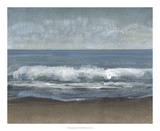 Lingering Grey I Premium Giclee Print by Tim OToole