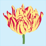 Soho Tulip II Art by Zachary Alexander