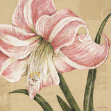 Blooming Wonder II Prints by Judy Shelby