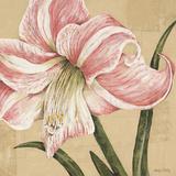 Blooming Wonder II Prints by Judy Shelby