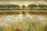 Tiverton Lake Prints by Jack Roth