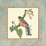 Bel Air Songbirds II Art by Zachary Alexander