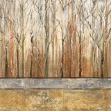 Telluride I Art by Michael Brey