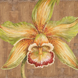Aloha Beauty I Prints by Judy Shelby