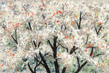 Pear Blossoms in Spring Print by Helena Alves