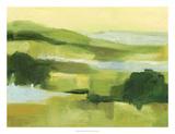 Emerald Wetlands II Premium Giclee Print by Ethan Harper