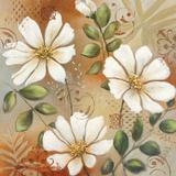 Siena White I Prints by Michael Brey