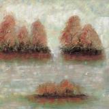 Tamarac Shores I Kunstdruck von Jack Roth