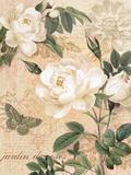 Gardener's Gift I Premium Giclee Print by Ching Han