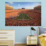 NCAA Tennessee Volunteers 2015 RealBig Stadium Mural Wall Mural